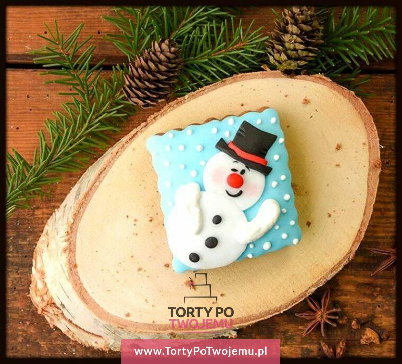 Ciastko Bożonarodzeniowe 2016 01